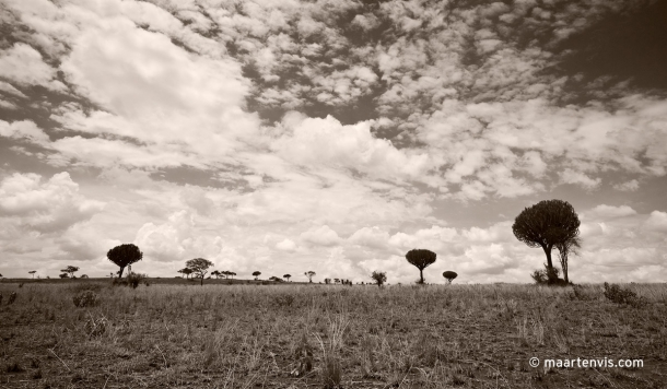 20081130 3831 610x356 - Tarangire National Park