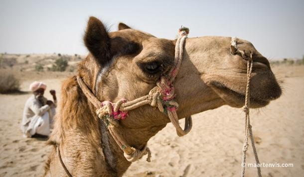 20100223 3669 610x356 - Rajasthan Desert Camp