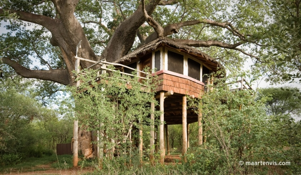20081129 3327 610x355 - Tarangire Treetops, Tanzania