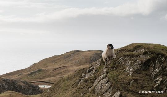 A Pilgrimage to Slieve League Cliffs Ireland