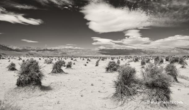 20120424 5784 610x356 - Into Death Valley