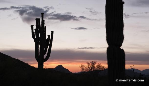 20120502 68292 610x356 - In the Arizona Desert