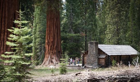 20120504 7048 540x315 - Sequoia Grove