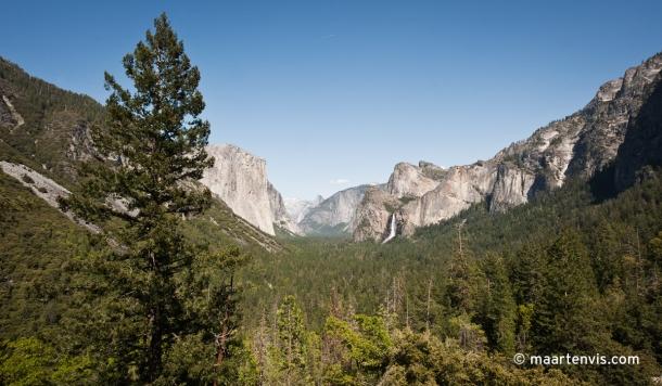 20120505 7066 610x356 - Bear Spotting in Yosemite Valley