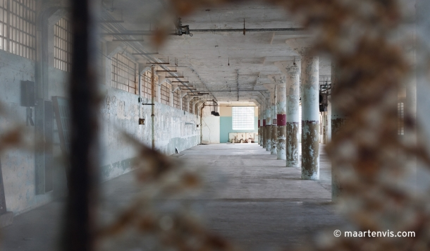 united states  San Francisco Prison Island Darwin Coon California Alcatraz