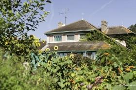 20120906 9365 280x185 - Strolling Through Monet's Garden