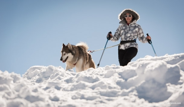 Husky Sleigh Riding in the Austrian Alps