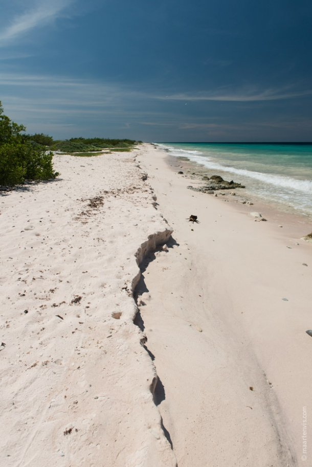 20130905 2186 610x913 - Bye Bye Bonaire