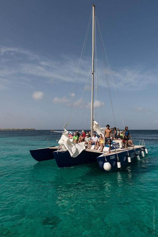 20130909 3050 610x913 - Snorkelling Near Klein Bonaire