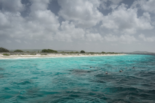 20130909 30581 540x360 - Snorkelling Near Klein Bonaire