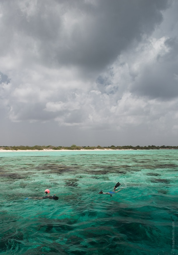 20130909 3153 610x876 - Snorkelling Near Klein Bonaire