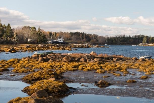 20131103 5849 610x407 - Nova Scotia South Coast