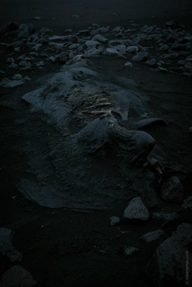 20131104 59381 610x913 - On A Black Beach
