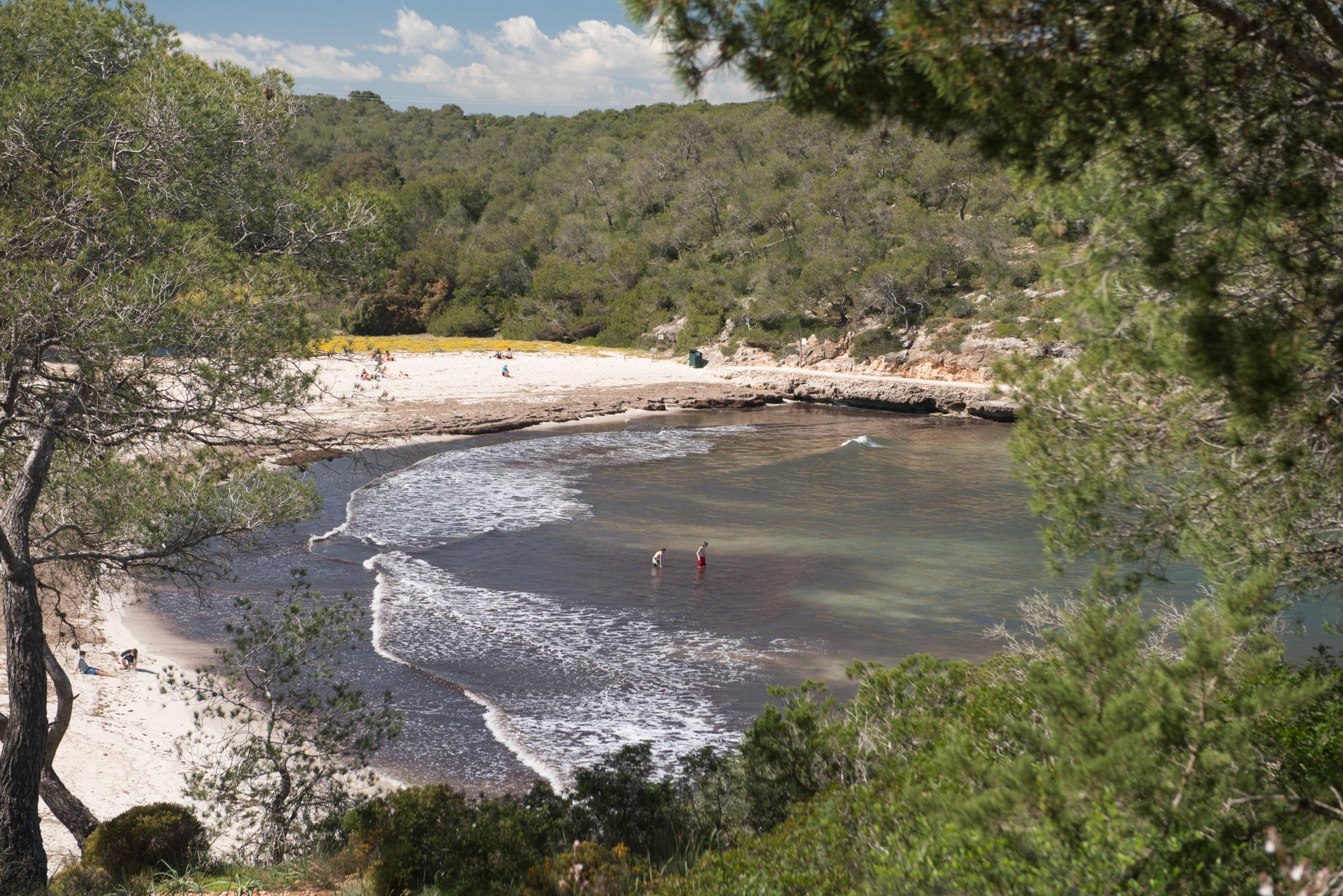 20140404 8418 - s' Amarrador beach in Mondragó NP