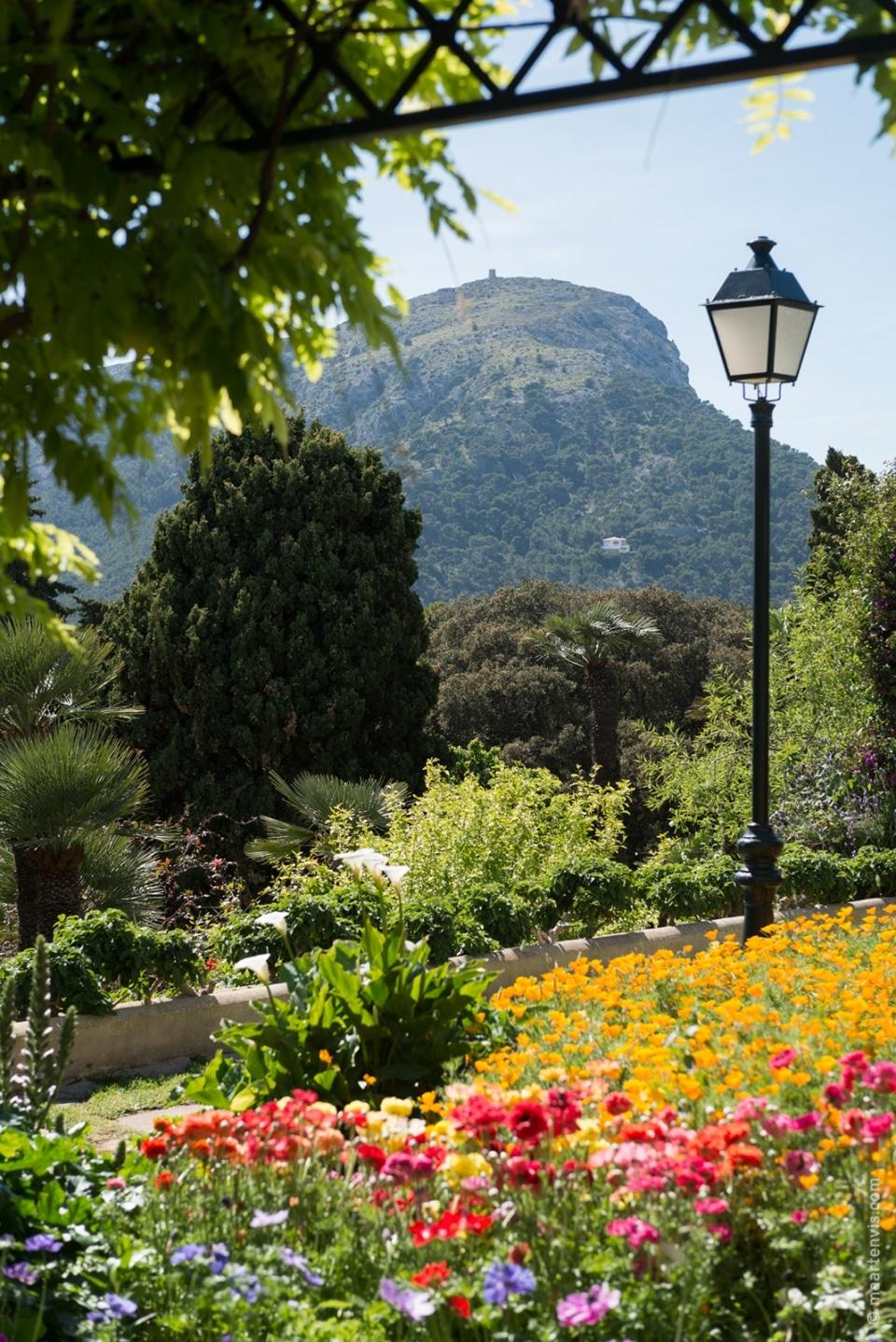 20140429 9385 960x1438 - Hotel Formentor in Spring