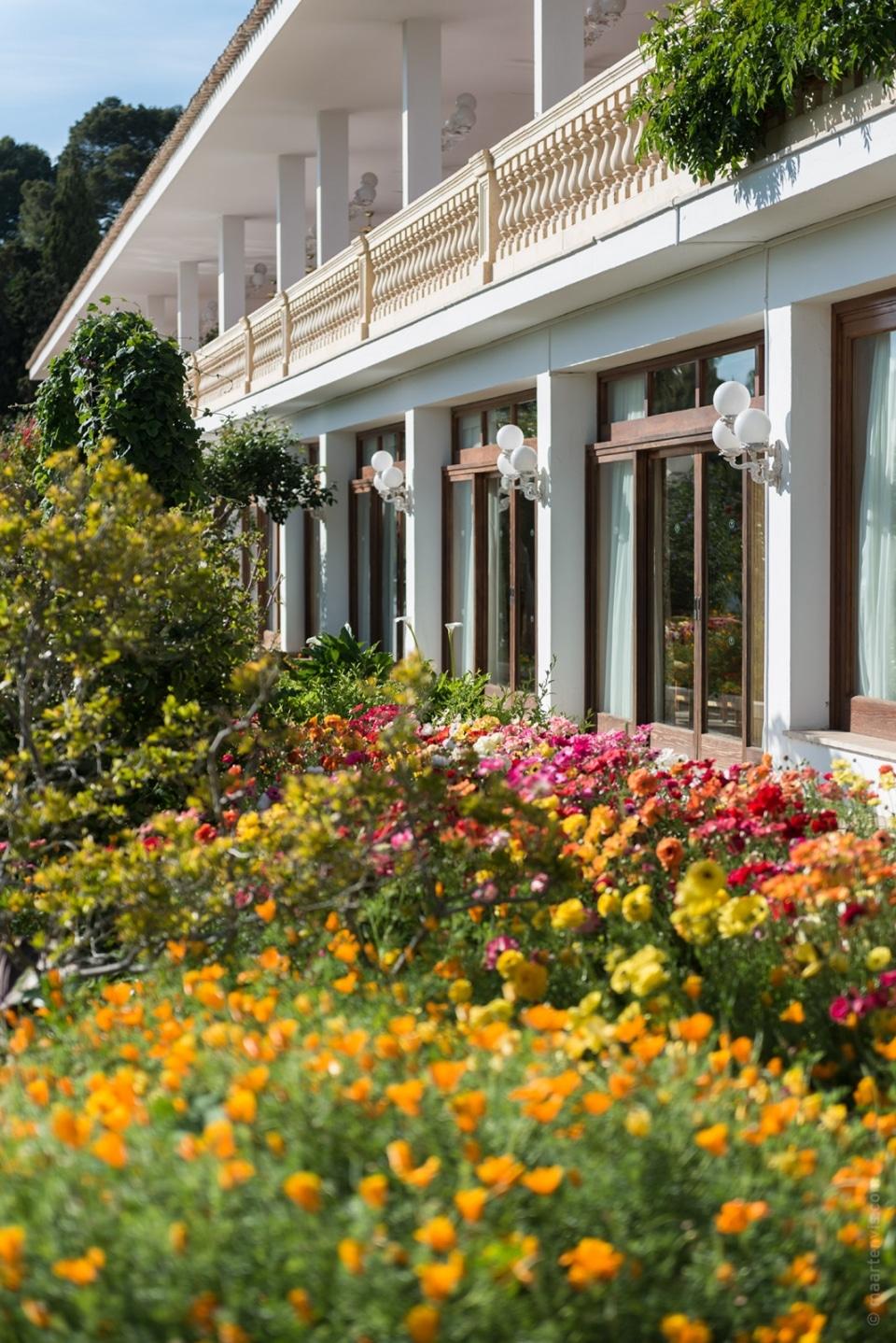 20140429 9560 960x1438 - Hotel Formentor in Spring