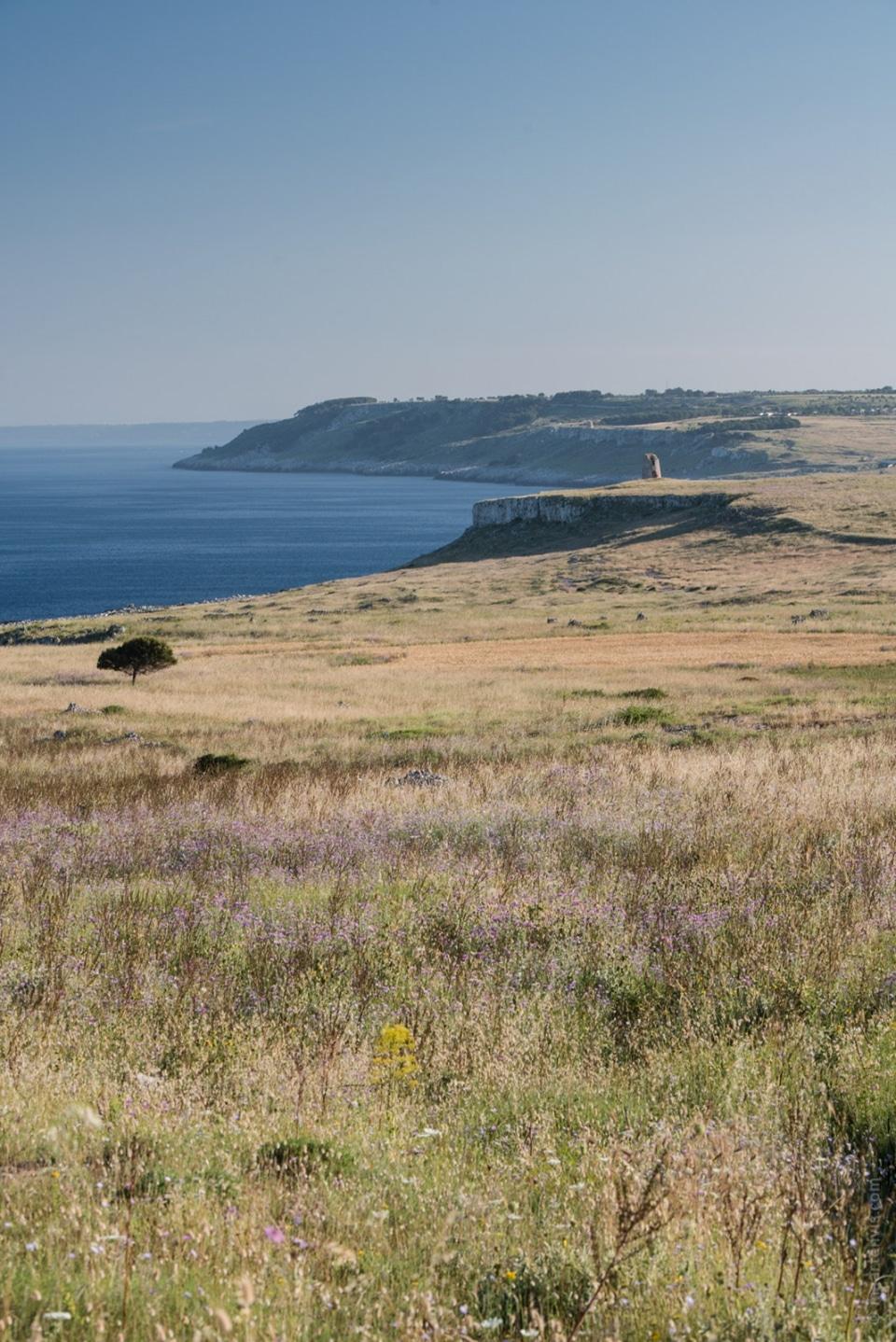 20140526 0686 960x1438 - Puglia Coastal Drive