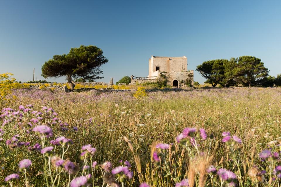 20140526 0699 960x640 - Puglia Coastal Drive