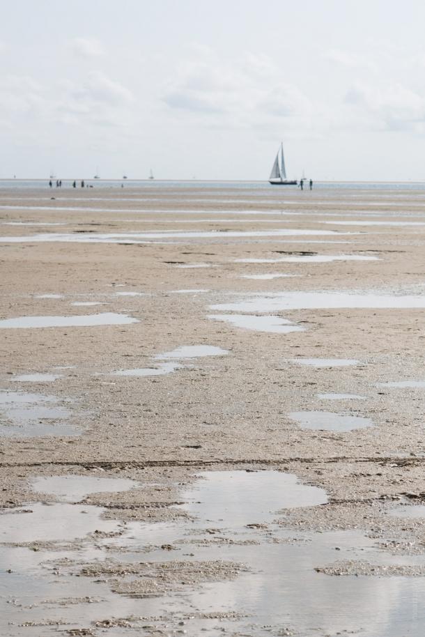 20140906 2585 610x914 - The Green Beach on Terschelling