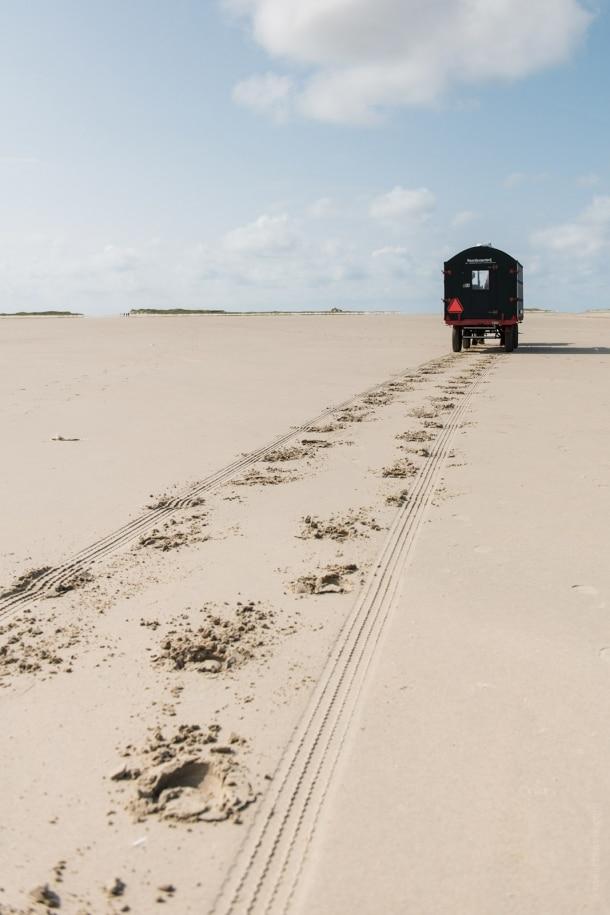 20140906 2633 610x915 - The Green Beach on Terschelling