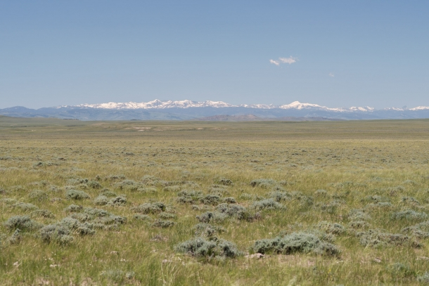 20150612 9125 610x407 - On the Road to Yellowstone