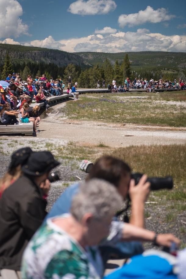 20150615 9555 610x914 - Yellowstone NP: Old Faithful