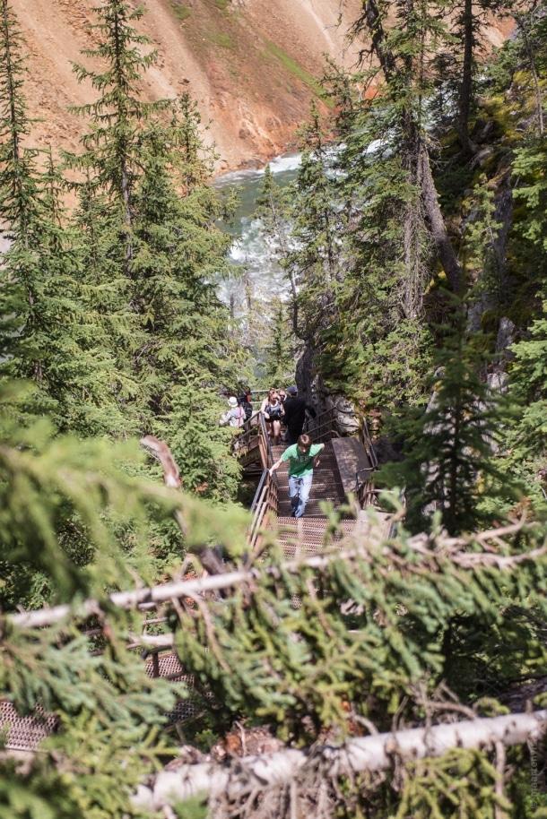 20150616 9796 610x914 - Yellowstone NP: Hiking at Yellowstone Grand Canyon