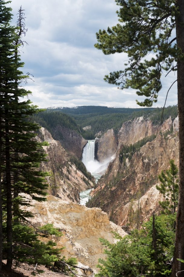 20150616 9857 610x914 - Yellowstone NP: Hiking at Yellowstone Grand Canyon