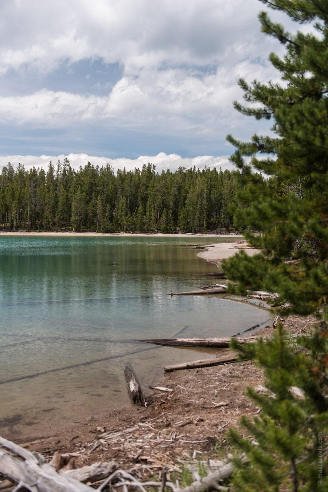 Yellowstone np hiking at yellowstone grand canyon fish for Clear lake