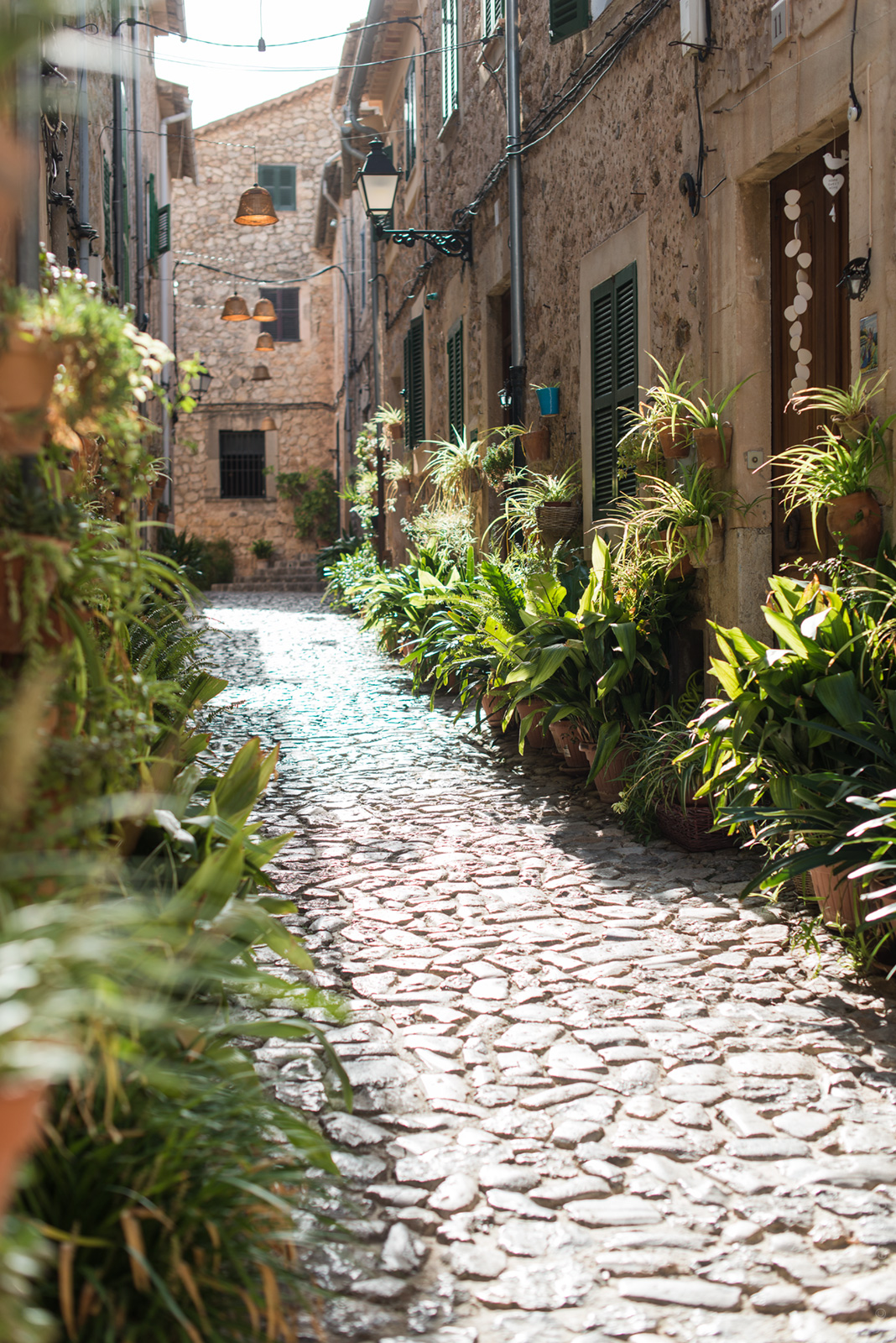 20151004 2556 - A Visit to Valldemossa