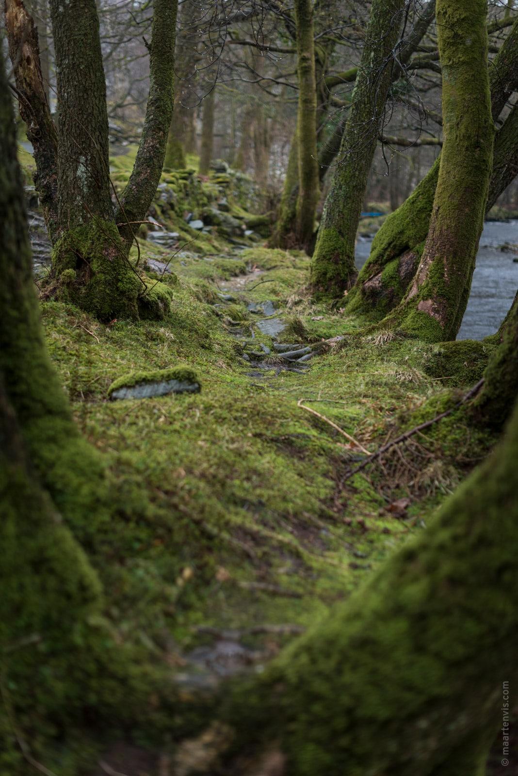 20160326 8423 - Lake District Impressions