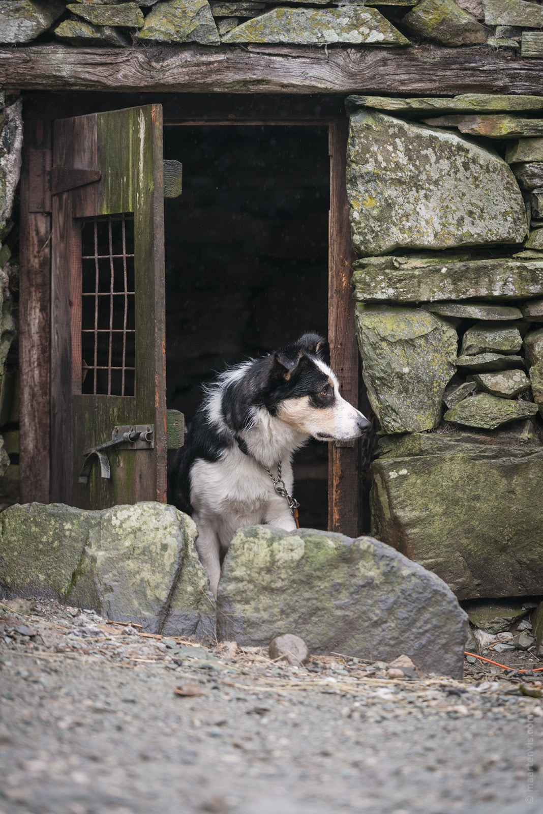 20160326 8524 - Lake District Impressions