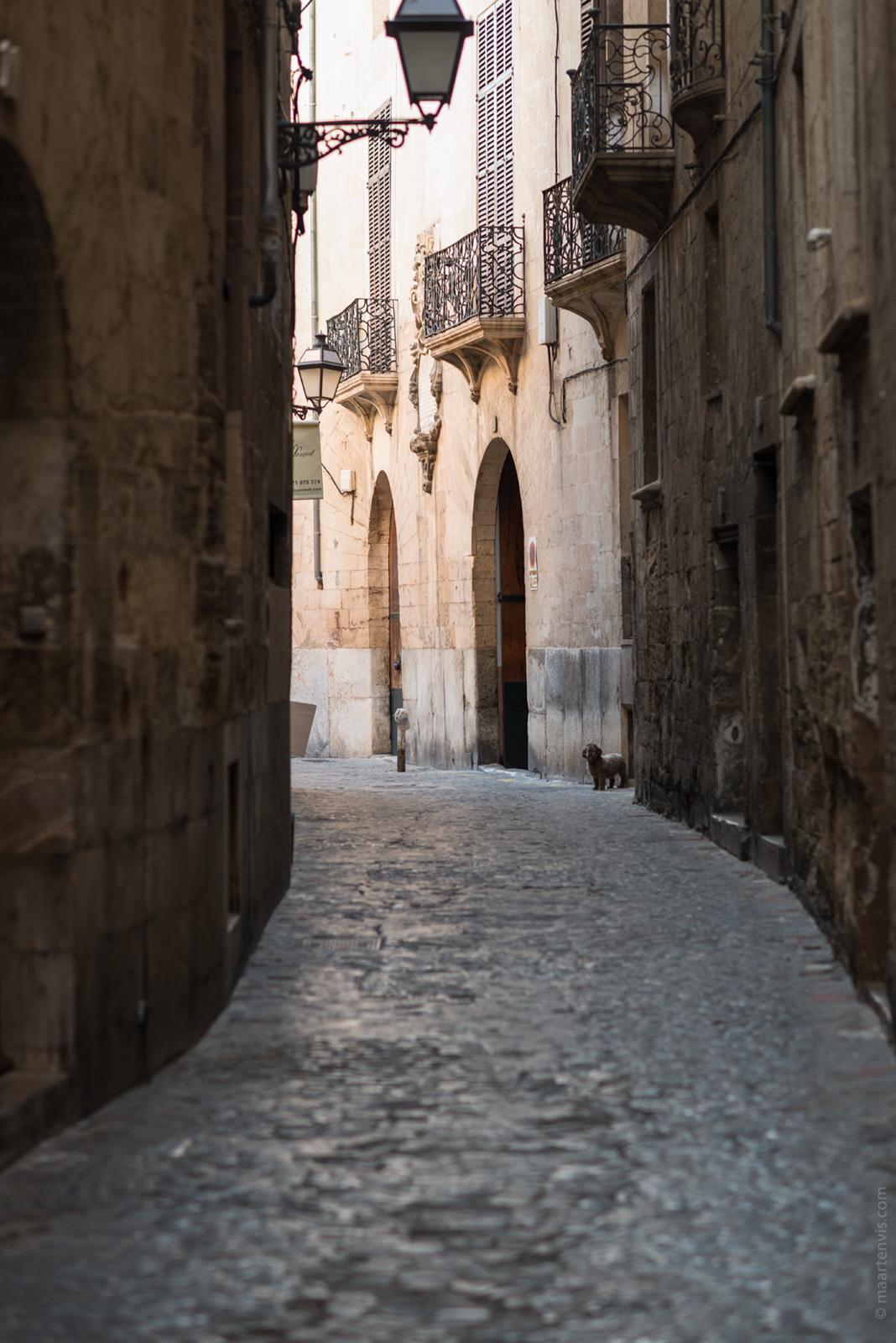 20161001 3193 - Palma de Mallorca