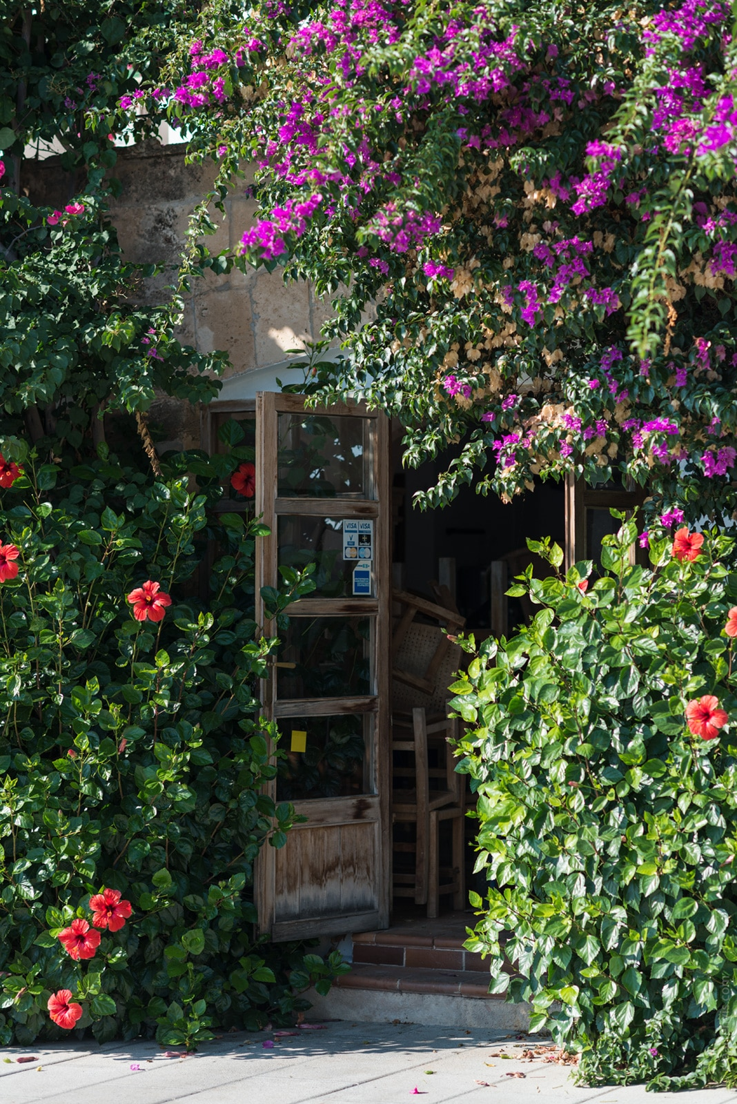 20161003 3464 - Mallorca in Spring