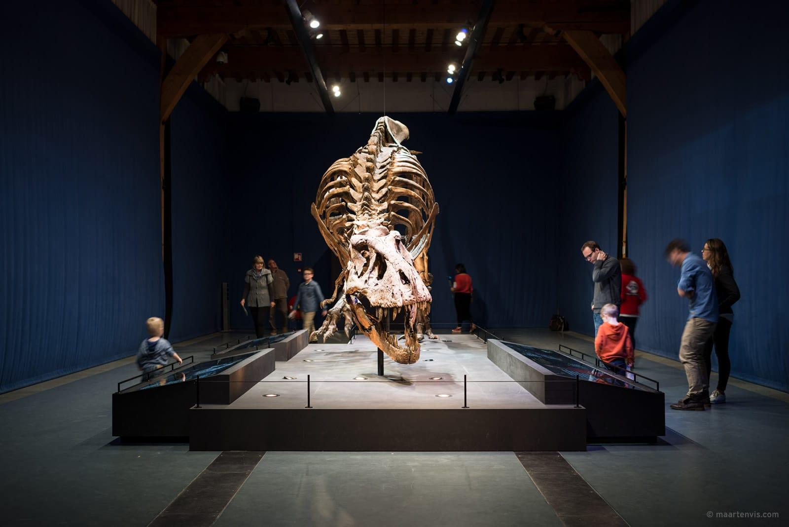 Meeting T-Rex Trix The Netherlands