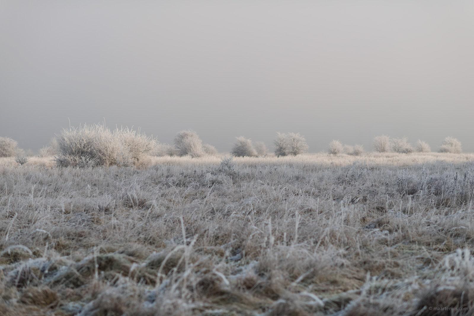 20161231 7279 - Winter in Limburg