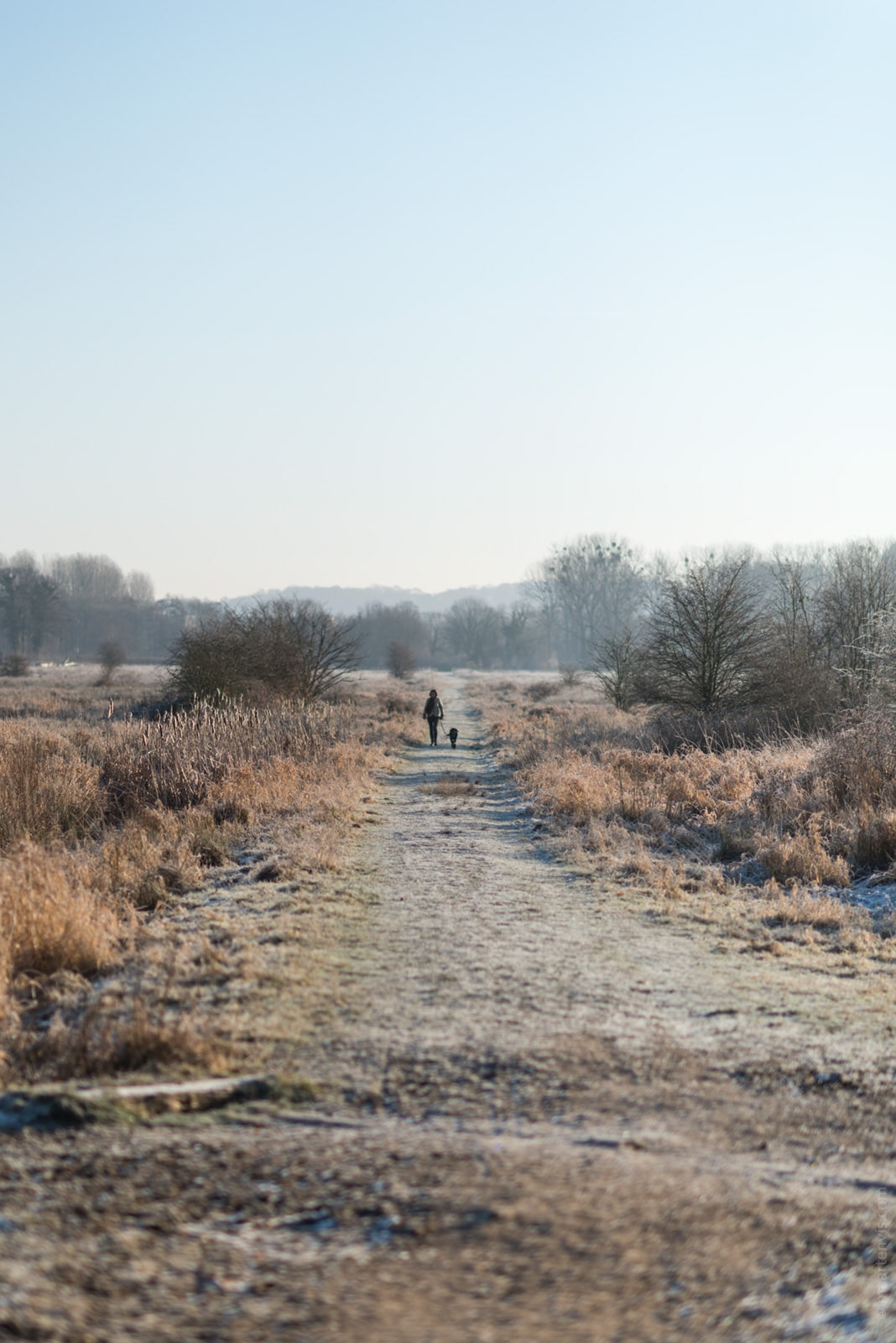 Winter in Limburg The Netherlands   Winter in Limburg The Netherlands