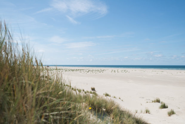 20170708 3637 620x414 - Driving the Terschelling North Beach