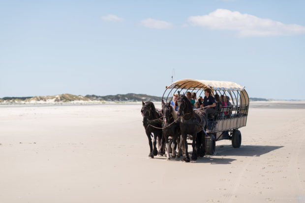 20170709 3924 620x414 - Beach Wagon Tour on Terschelling