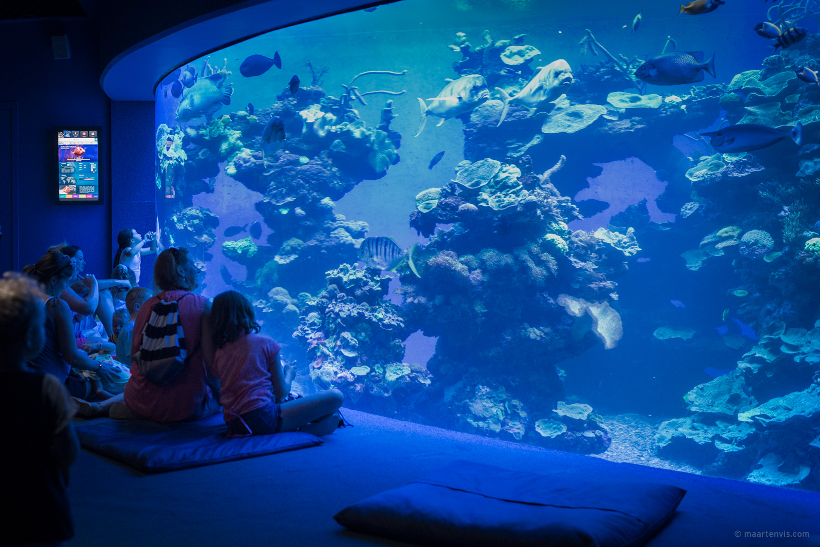 A family friendly trip to the Palma Aquarium on Mallorca.