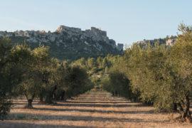 20170924 6790 270x180 - Les Baux de Provence