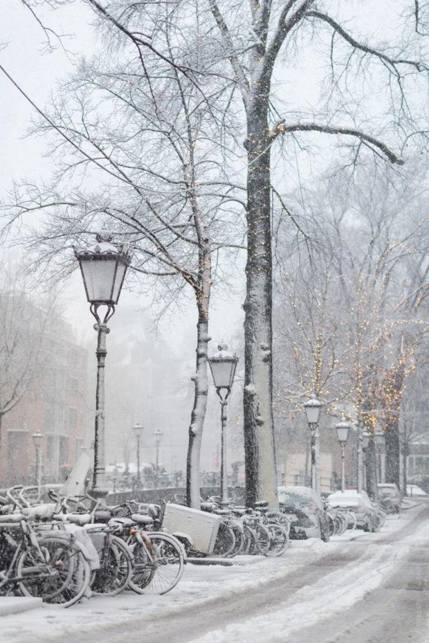 20171210 8966 620x929 - Snow in Amsterdam