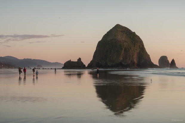 20180320 4440 Edit 620x413 - Chasing One-Eyed Willy in Cannon Beach