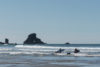 20180320 4534 100x67 - Hiking in Ecola State Park