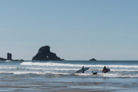 20180320 4534 270x180 - Hiking in Ecola State Park