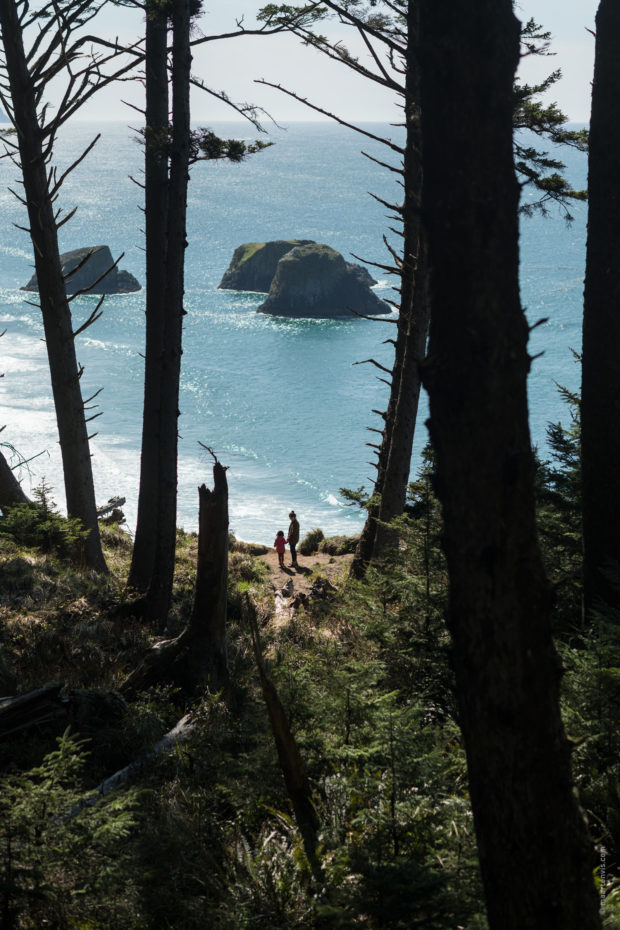 20180320 4586 Edit 620x930 - Hiking in Ecola State Park