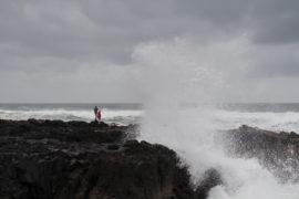 20180323 5020 270x180 - Blown Away at Cape Perpetua