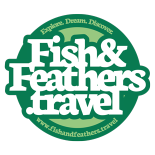 Fish and Feathers Travel Blog